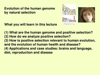 Evolution of the human genome  by natural selection What you will learn in this lecture