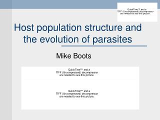 Host population structure and the evolution of parasites