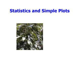 Statistics and Simple Plots