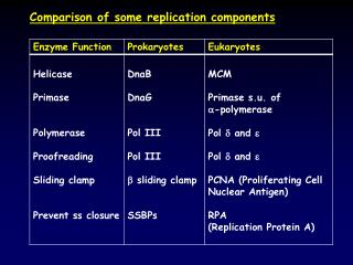 Comparison of some replication components