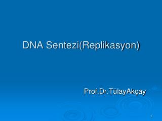 DNA Sentezi(Replikasyon)