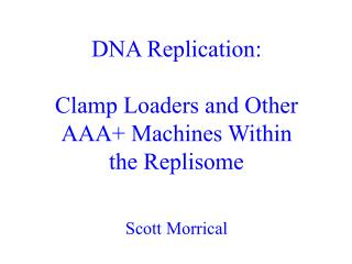 DNA Replication: Clamp Loaders and Other AAA+ Machines Within the Replisome Scott Morrical