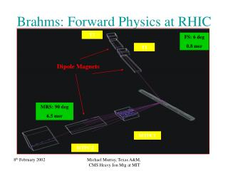 Brahms: Forward Physics at RHIC