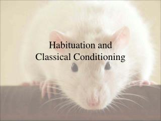 Habituation and  Classical Conditioning