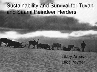 Sustainability and Survival for Tuvan and Saami Reindeer Herders