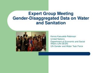 Expert Group Meeting Gender-Disaggregated Data on Water and Sanitation