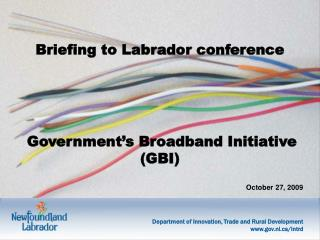 Briefing to Labrador conference Government's Broadband Initiative (GBI)