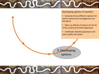 3. Developing        options