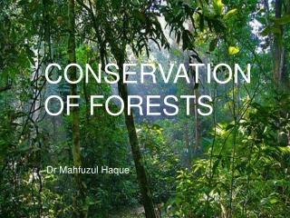 CONSERVATION OF FORESTS