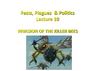 Pests, Plagues  & Politics Lecture 10 INVASION OF THE KILLER BEES