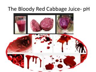 The Bloody Red Cabbage Juice- pH