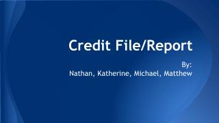 Credit File/Report