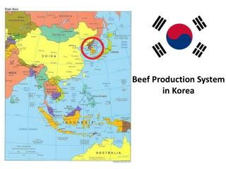 Beef  Production  System  in  K orea