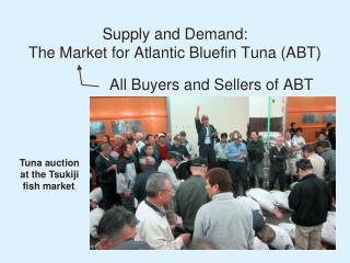 Supply and Demand:  The Market for Atlantic  Bluefin  Tuna (ABT)