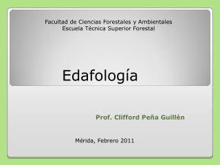 Prof. Clifford Peña Guillén
