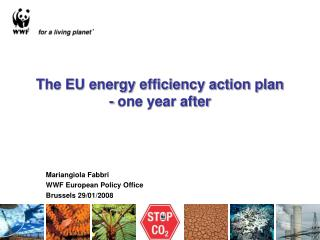 The EU energy efficiency action plan - one year after