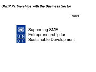 Supporting SME Entrepreneurship for Sustainable Development