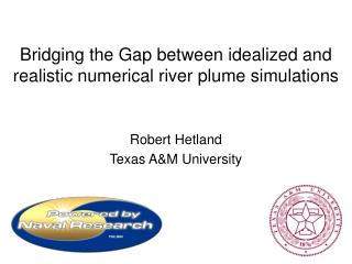 Bridging the Gap between idealized and realistic numerical river plume simulations