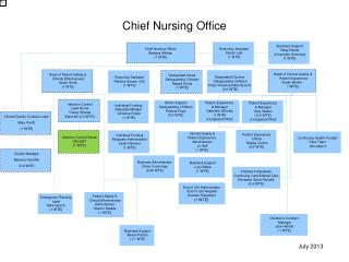 Chief Nursing Officer Barbara Mclean (1 WTE)