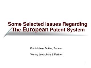 Some Selected Issues Regarding   The  European  Patent System