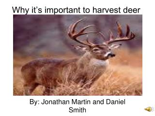 Why it's important to harvest deer