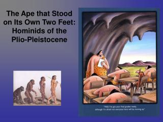 The Ape that Stood on Its Own Two Feet: Hominids of the  Plio-Pleistocene