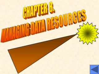 CHAPTER 8.   MANAGING DATA RESOURCES