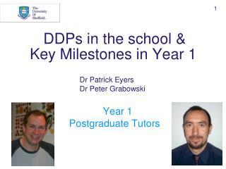 DDPs in the school & Key Milestones in Year 1