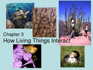 Chapter 3 How Living Things Interact