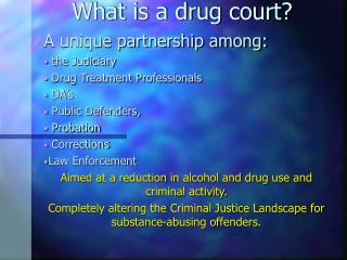 What is a drug court?