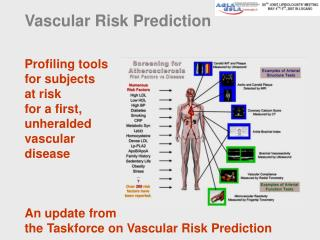Vascular Risk Prediction
