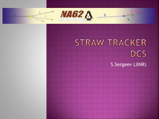 Straw Tracker DCS