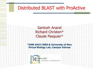 Distributed BLAST with ProActive