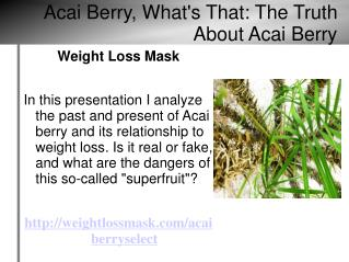 Acai Berry, What's That: The Truth About Acai Berry