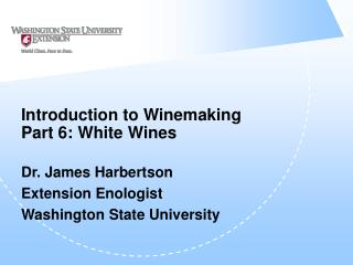 Introduction to Winemaking Part 6: White Wines
