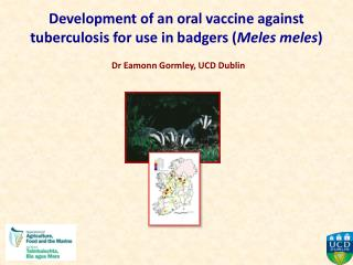 Development of an oral vaccine against tuberculosis for use in badgers ( Meles meles )