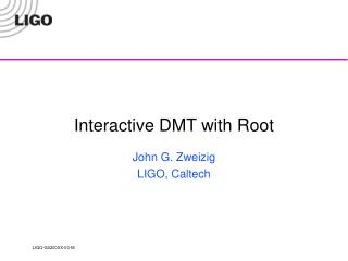 Interactive DMT with Root