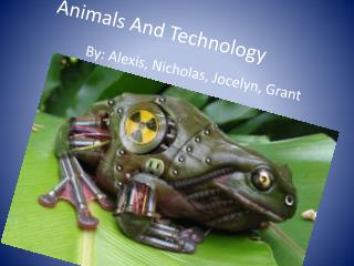 Animals And Technology