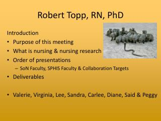 Robert Topp, RN, PhD