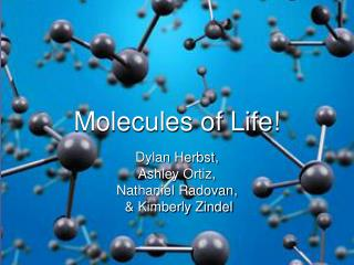 Molecules of Life!