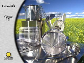 What is Canola?