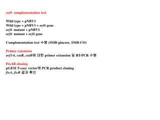 orf6 - complementation test Wild type + pNBV1 Wild type + pNBV1 + orf6 gene