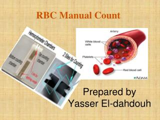 RBC Manual Count