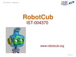 RobotCub