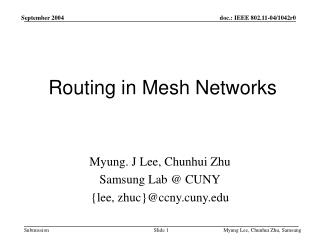 Routing in Mesh Networks