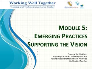 Module 5: Emerging Practices  Supporting the Vision