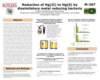 Reduction of Hg(II) to Hg(0) by dissimilatory metal reducing bacteria Heather Wiatrowski and Tamar Barkay