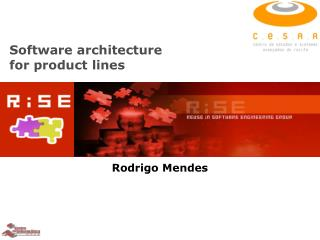 Software architecture  for product lines