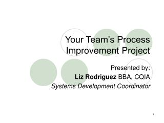 Your Team's Process Improvement Project