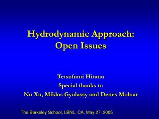 Hydrodynamic Approach: Open Issues